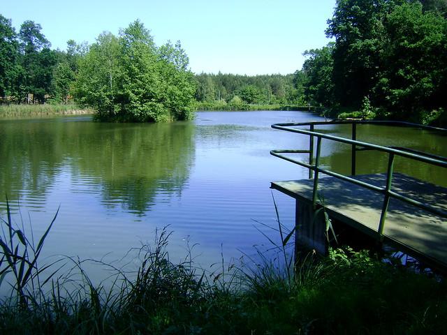 """w środku lasu takie """"jezioro"""""""