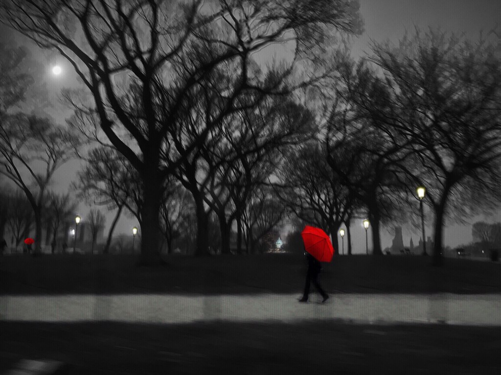 grey day the red umbrella alone on the mall 1 the