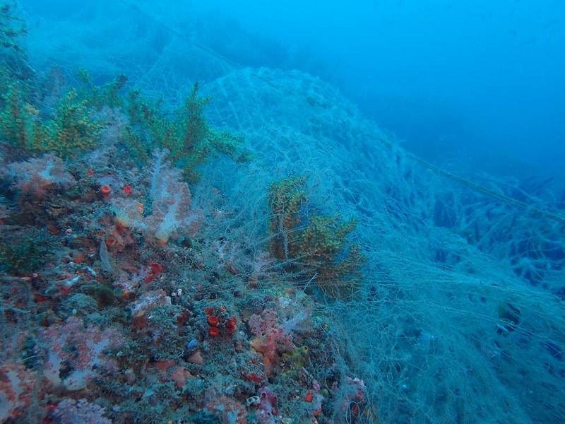 海底下的真相,廢棄漁網覆蓋珊瑚礁,怵目驚心。圖片來源:林祐平。