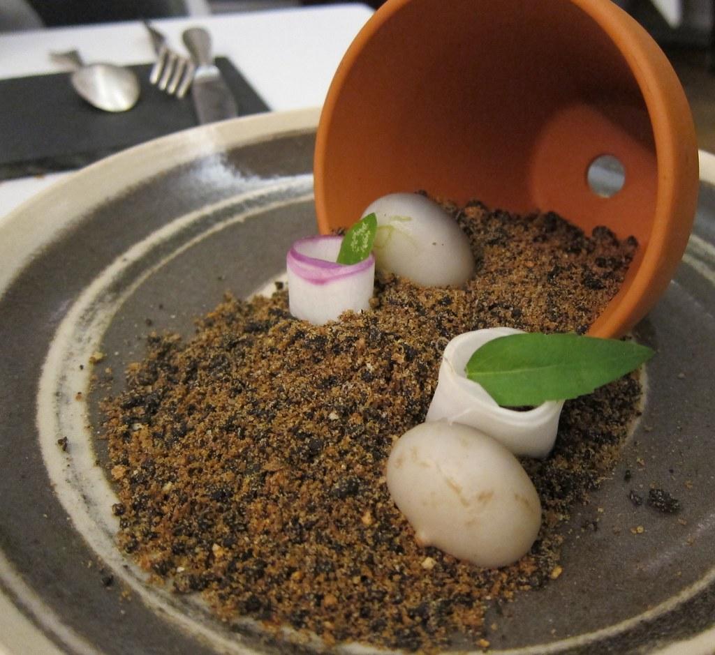 Navet tendre ruban terreau d olives navet tendre for Terreau
