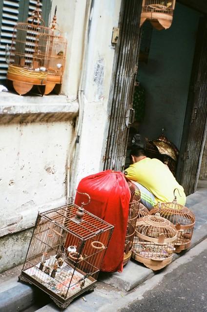 {Hanoi - on the street 6}