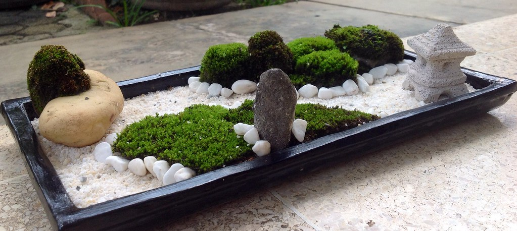moss of zen moss mymoss naturemoss seemymoss here zen flickr. Black Bedroom Furniture Sets. Home Design Ideas