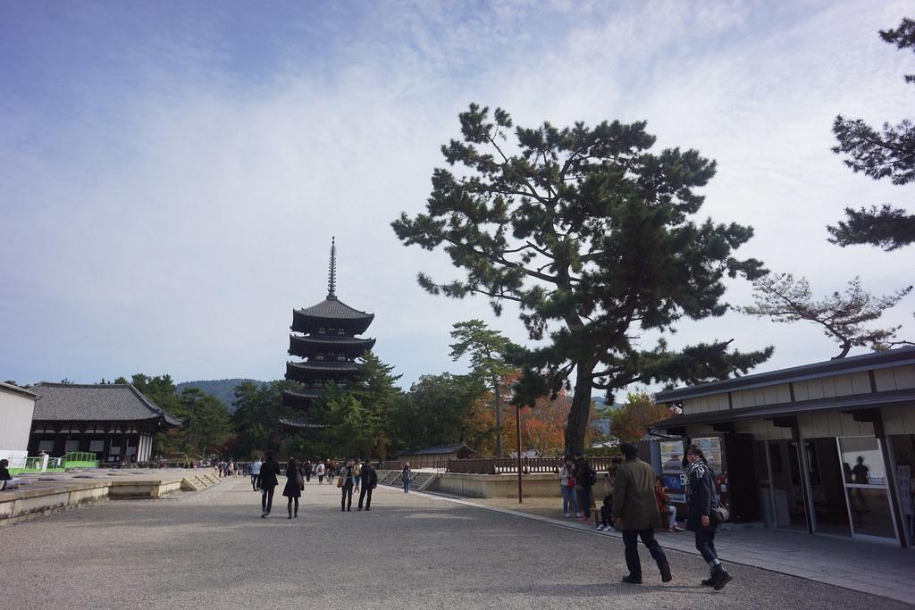 The temple city of Nara, Japan  Nasya Bahfen  Flickr