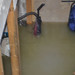 Flooding due to sewer back-up