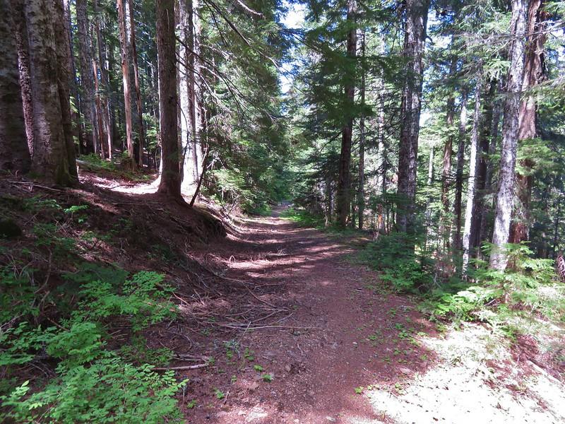 Huffman Peak Trail