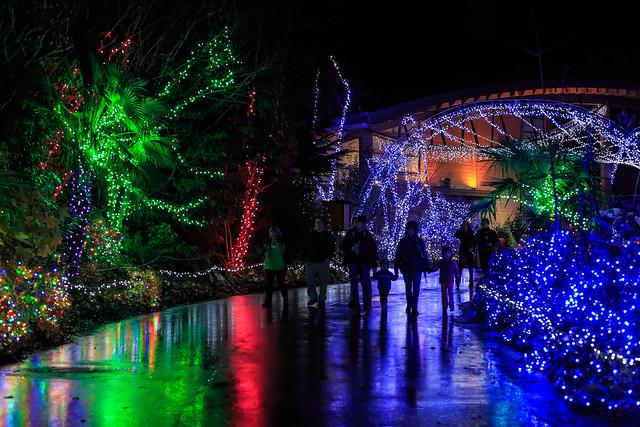 Wildlights At Woodland Park Zoo Flickr Photo Sharing