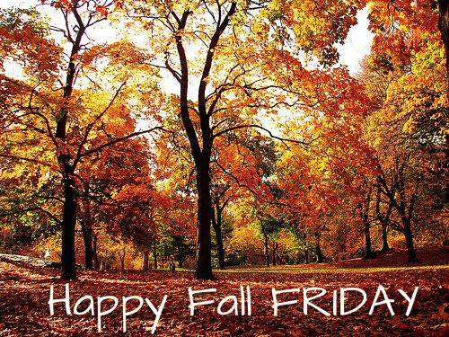 Bildergebnis für Happy Friday with fall