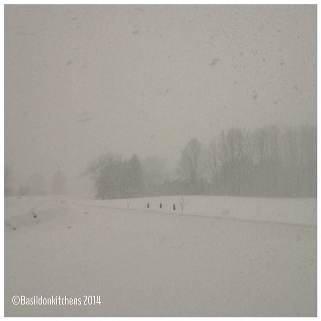 27/2/2014 - my view today {this was my morning commute} #fmsphotoaday #view #princeedwardcounty #ctyrd17 #millerroad #winter #weather #whiteout