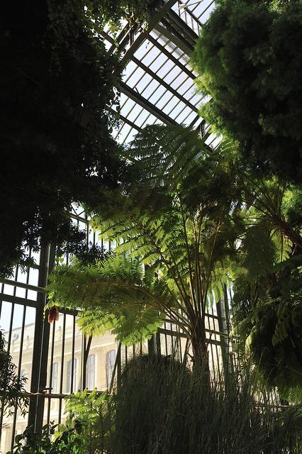 Photo for Paris jardin plantes
