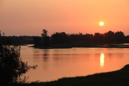嘉義東石鰲鼓濕地夕陽。攝影:賴鵬智;圖片來源:嘉義林管處