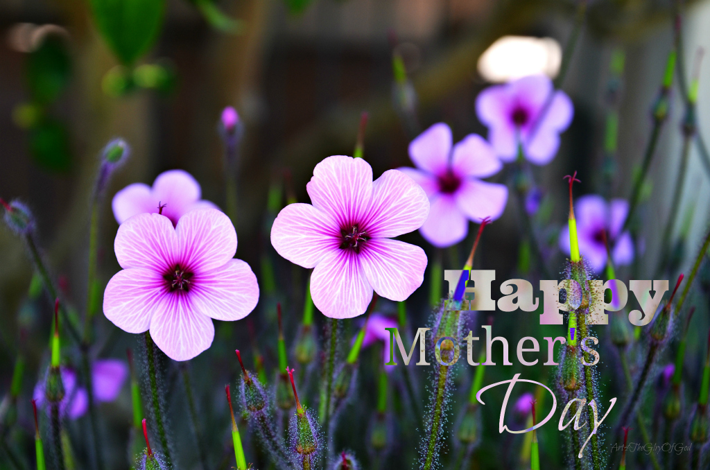 Image Result For Happy Mother S
