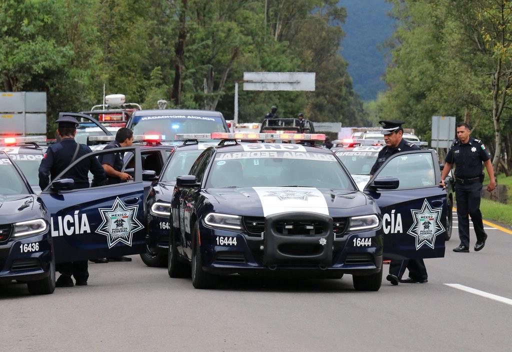 POLICIA - Galeria  Policia Federal  - Página 4 27013327201_fde8bbc46c_b