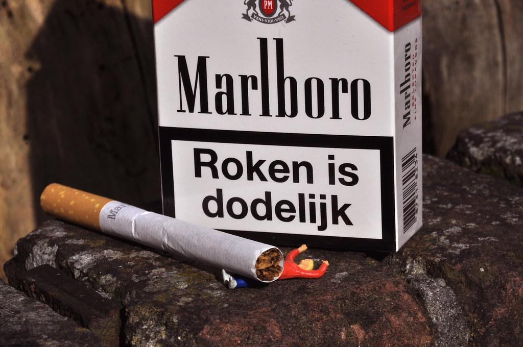 roken is dodelijk | ;-) | Marina Noordegraaf | Flickr