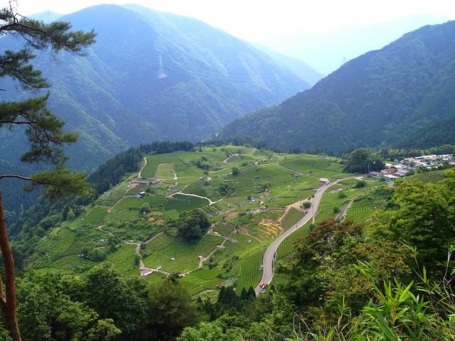 岐阜のマチュピチュ 天空の遊歩道 絶景スポット