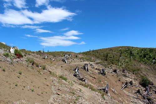 Mt.St.Helens-43