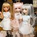 DollShow浅草1-2579-DSC_2579