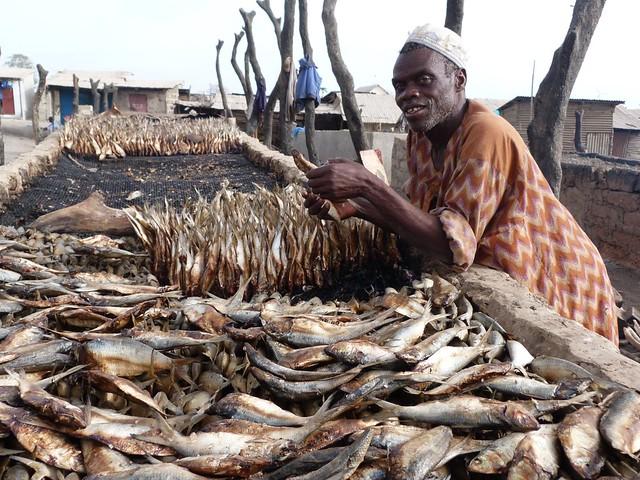 Hombre ahumando pescado en Banjul (Gambia)