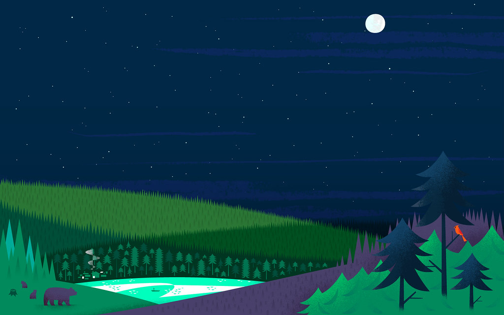 Latest 5d Wallpapers Google Search: Google Now - Forest Night