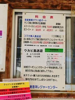 コマカ島-2016-06-19-21