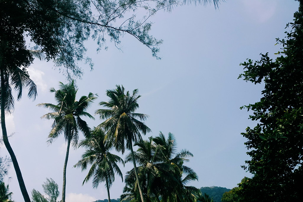 Monkey Beach & Muka Head LightHouse Are Penang's Hidden Treasures