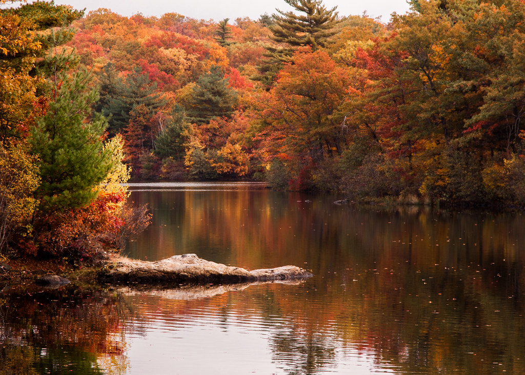 Fall Foliage Long Island New York
