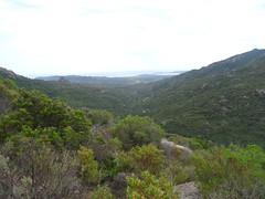 Sous Punta Piscia : la vallée de l'Osu en aval
