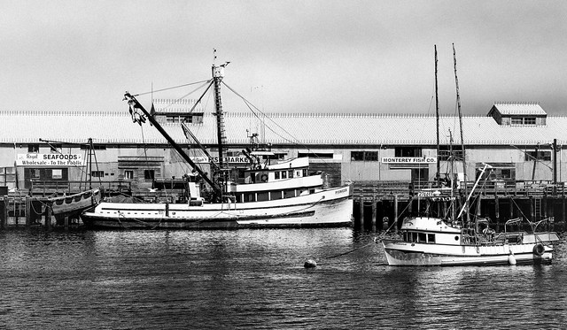 Monterey fishing boats flickr photo sharing for Monterey sport fishing