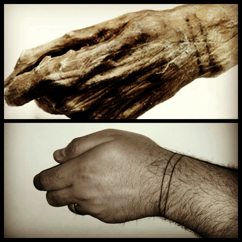 214 Tzi The Iceman Tattoo The 5 000 Year Old Mummy S Hand On Flickr