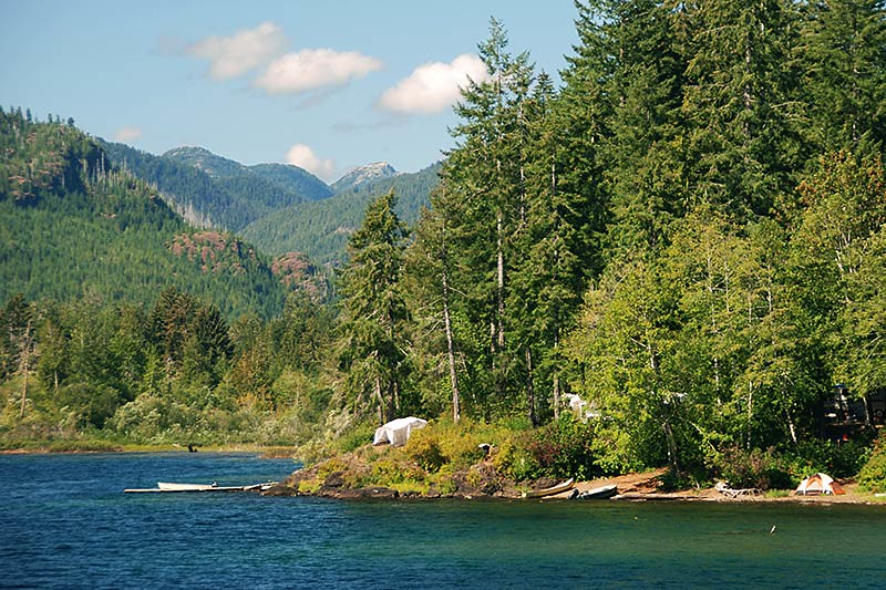 Campsite On The West End Of Sproat Lake Vancouver Island