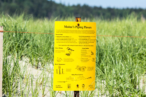 Sign at Popham Beach State Park