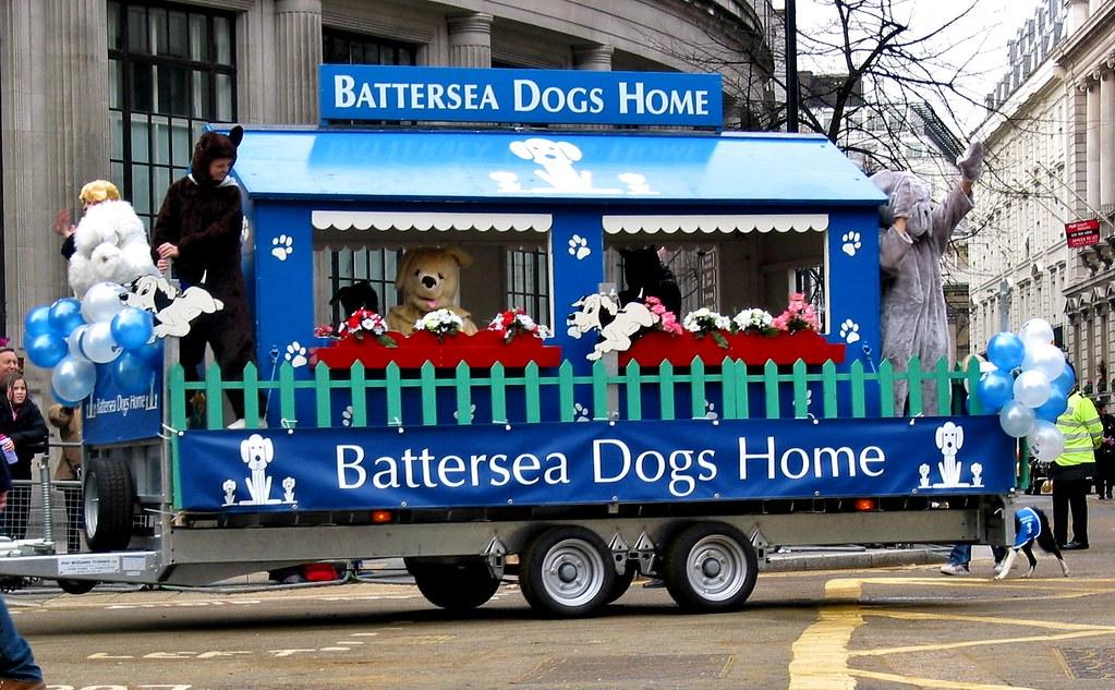 Battersea Dogs Home Jobs London
