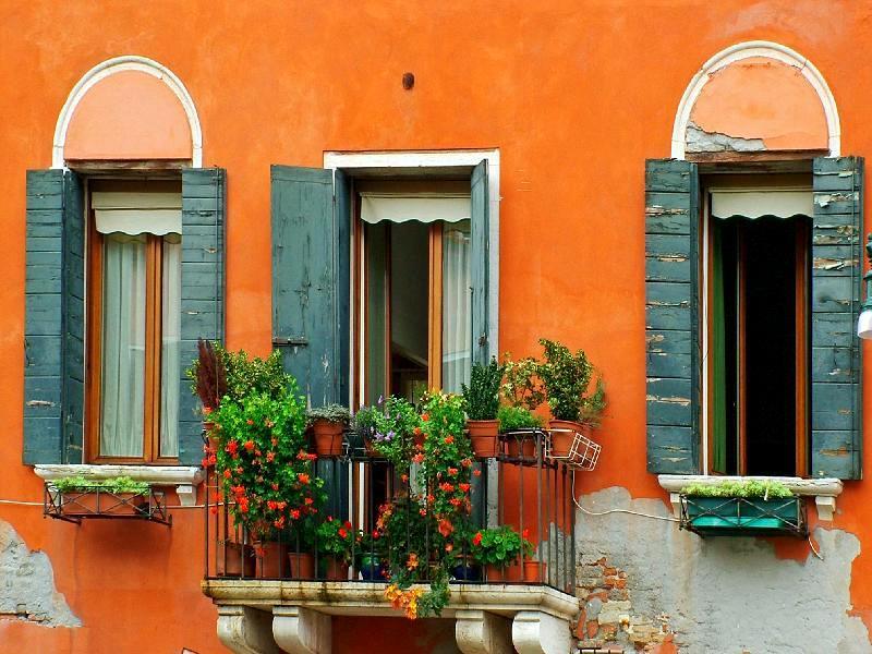 pretty orange with flowers caorle italy lorella flickr. Black Bedroom Furniture Sets. Home Design Ideas