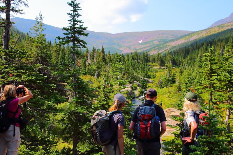 IMG_9982 Cobalt Lake Trail, Glacier National Park