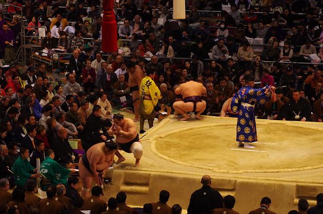 [url=https://www.flickr.com/photos/... 大相撲
