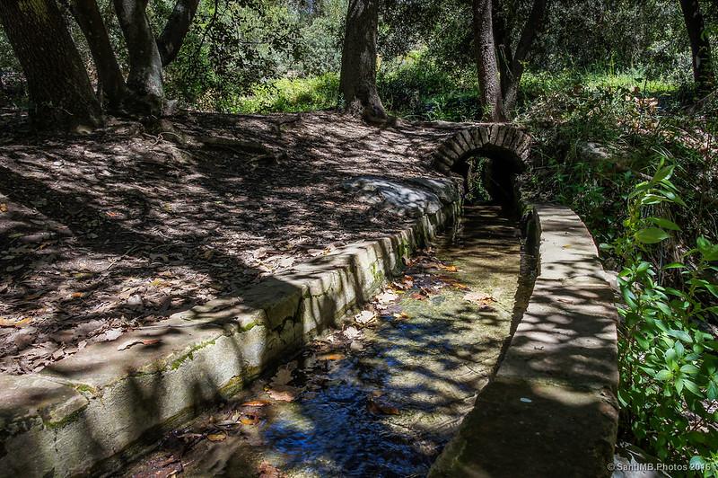 Aún circula agua por el canal
