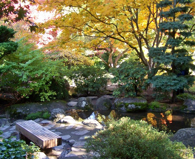 Photo for Japanese garden colors