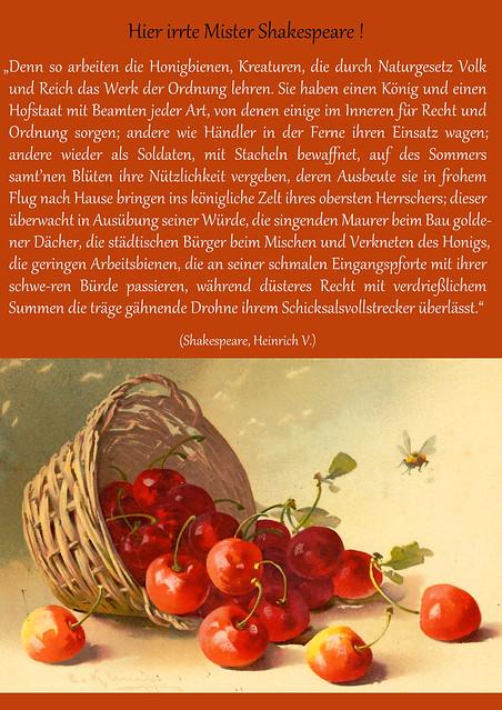 Bienen Bienenvolk Honigbiene William Shakespeare Bienenstich Imkerkrimi aus Mannheim Brigitte Stolle 2016