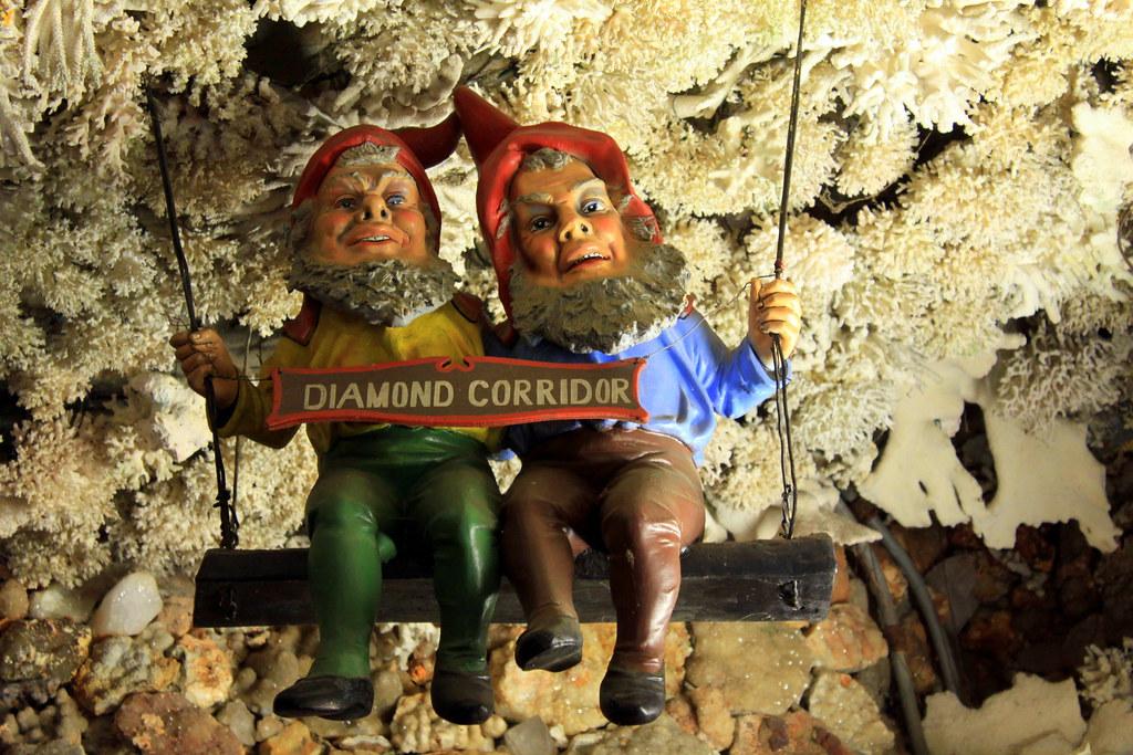 Chattanooga >> Rock City's Diamond Corridor Gnomes   Located soon past the …   Flickr