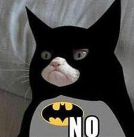 Cat Meme Kill