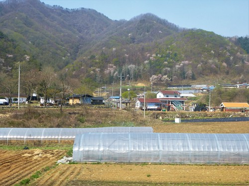c16-Chuncheon-Gangneung-route (21)