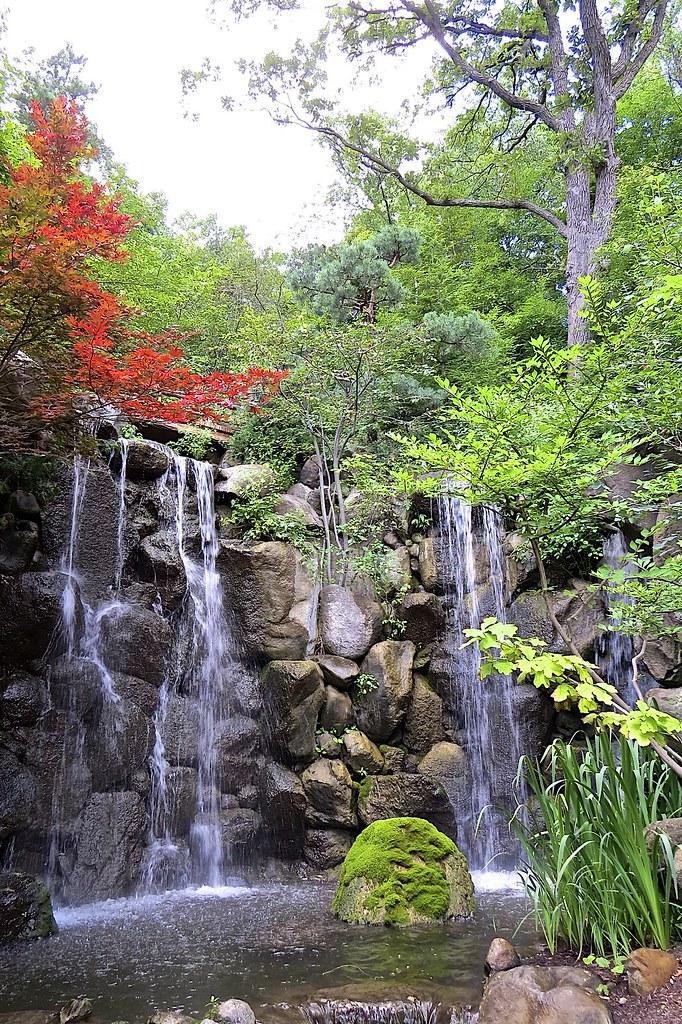 Anderson Japanese Gardens Rockford Il Alma Dzib