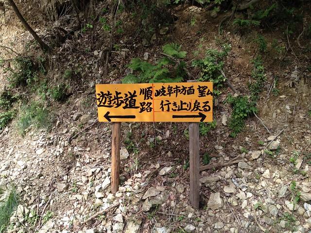 岐阜のマチュピチュ 天空の遊歩道 林道合流 案内板