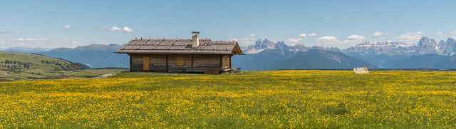 Villanderer Alm, Dolomiten im Hintergrund