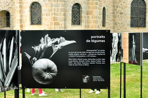 Bretagne 2016 - Saint-Gildas-de-Rhuys - Fotoausstellung - Pflanzenfamilien - exibitionistischer Onkel u. a. - Foto: Brigitte StolleBretagne 2016 - Saint-Gildas-de-Rhuys - Fotoausstellung - Pflanzenfamilien - exibitionistischer Onkel u. a. - Foto: Brigitte Stolle