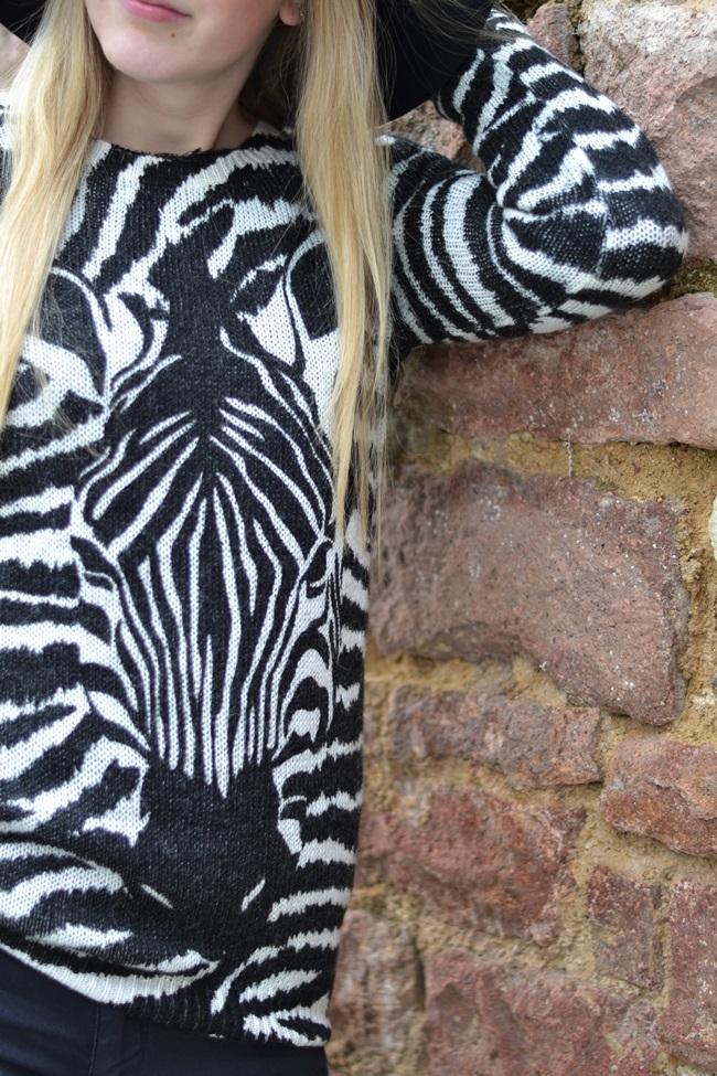 Outfit Auf´s Zebra gekommen Übersicht (2)