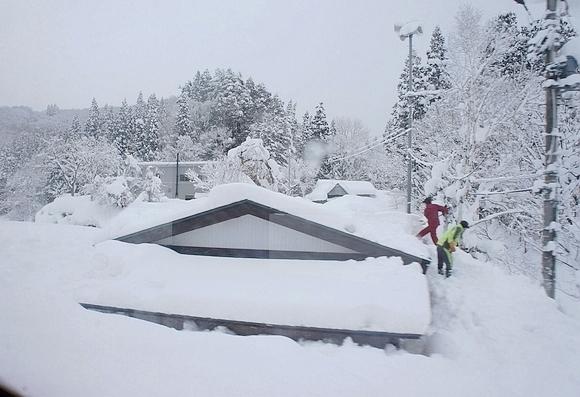 日本森吉山樹冰10
