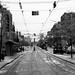 Empty streetcar tracks