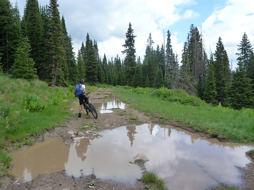 A few puddles...