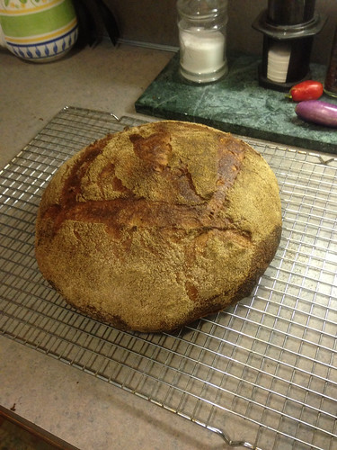 my clone of Zingerman's French Mountain Bread