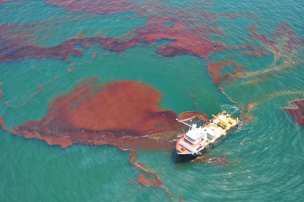 an analysis of the oil flowing out of the bp which caused havoc on the environment of the gulf